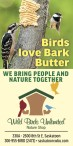 Get the best birdfood in town